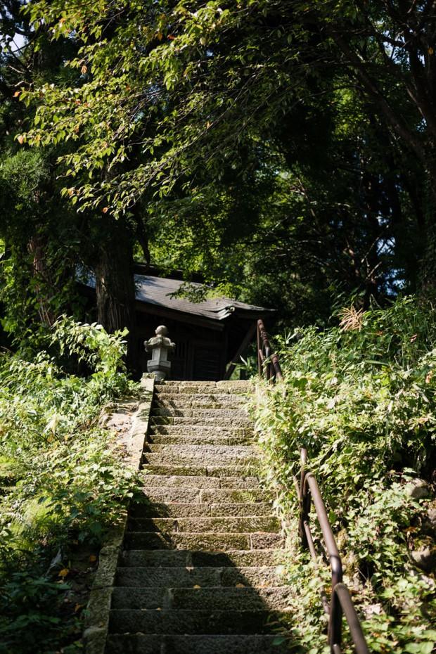 裏山 入り口の石段