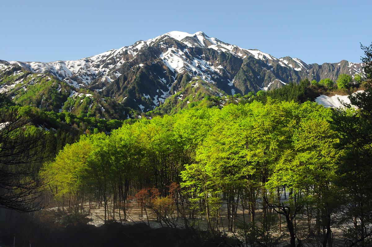 残雪の越後駒ヶ岳