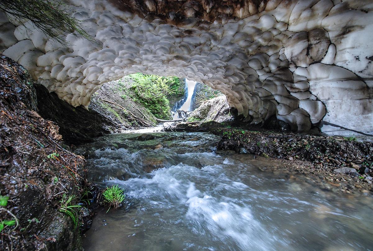 湯沢の春の水辺
