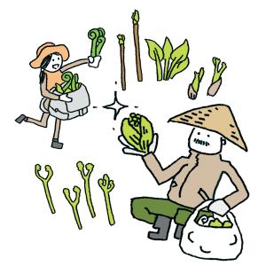 山菜いろいろ