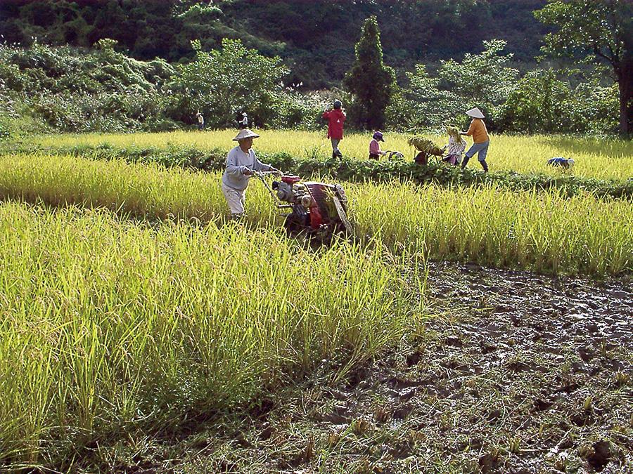 微生物との共生 農作物たち