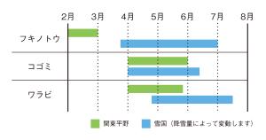 関東平野と雪国の山菜の収穫時期