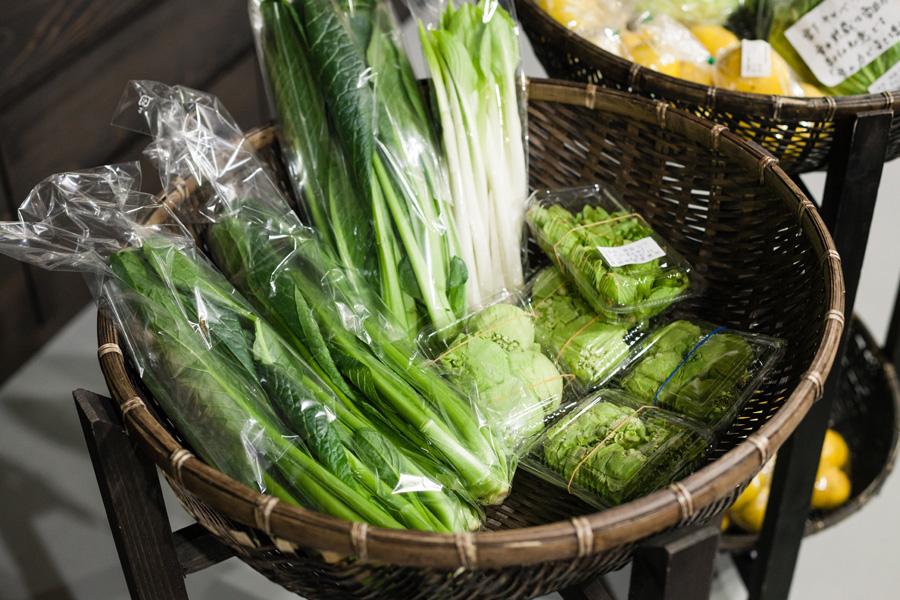 雪室にある売店では魚沼で採れた山菜を買うことができる