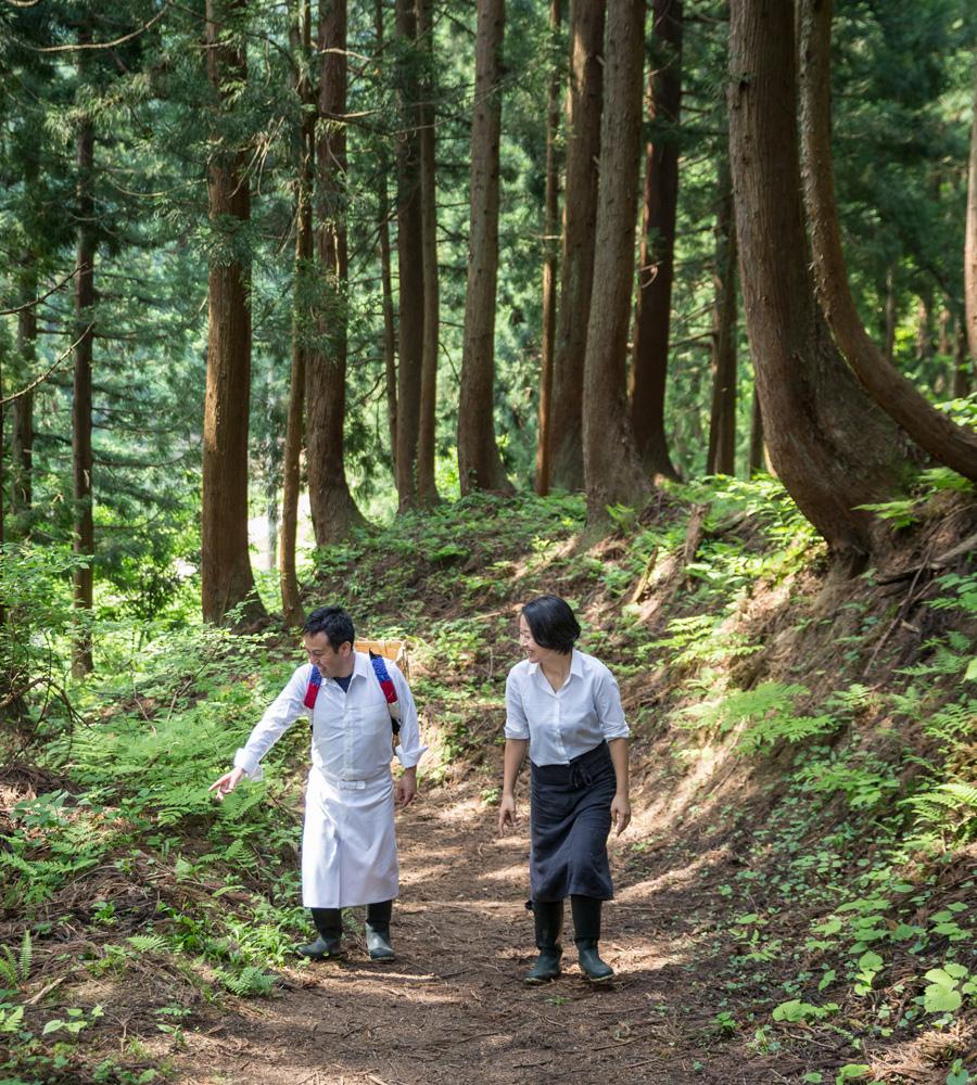 裏山おさんぽツアー